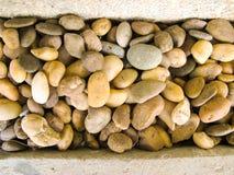 Piedras reeble redondas secas de Brown imagenes de archivo