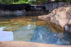 Piedras reflejadas transparentes del agua de río en parque Imagen de archivo