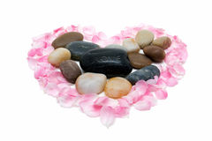 Piedras rodeadas por los pétalos Foto de archivo libre de regalías