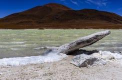 Piedras Rojas, Atacama, chile Arkivbilder