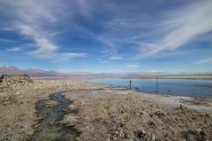 Piedras Rojas (red rocks). Landscape in the Atacama Desert Chile Stock Photo