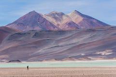 Piedras Rojas, volcano, snow, mountain, rocks, lake, white sand, turquoise water Stock Images