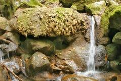 Piedras salvajes con la sal y la corriente del agua fotos de archivo