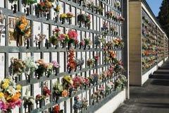 Piedras sepulcrales alineadas en un cementerio con los tulipanes rosados delante de las lápidas mortuorias Foto de archivo libre de regalías