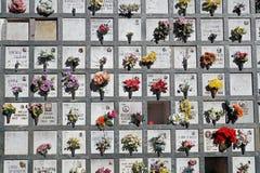 Piedras sepulcrales alineadas en un cementerio con los tulipanes rosados delante de las lápidas mortuorias Fotos de archivo libres de regalías