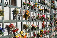 Piedras sepulcrales alineadas en un cementerio con los tulipanes rosados delante de las lápidas mortuorias Imagen de archivo