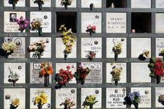 Piedras sepulcrales alineadas en un cementerio con los tulipanes rosados delante de las lápidas mortuorias Imagenes de archivo