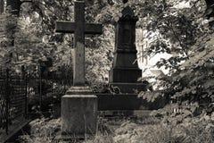 Piedras sepulcrales viejas en el cementerio abandonado Rebecca 36 Fotografía de archivo libre de regalías