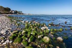 Piedras verdes Foto de archivo libre de regalías
