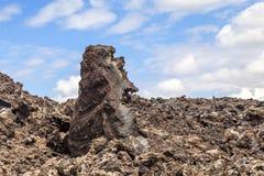 Piedras volcánicas en Timanfaya, Lanzarote Fotografía de archivo libre de regalías