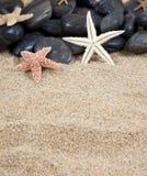 Piedras y arena negras de las estrellas de mar Foto de archivo