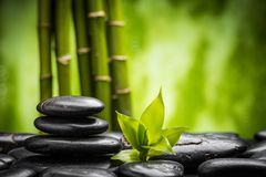 Piedras y bambú del zen imagen de archivo libre de regalías
