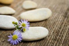 Piedras y flores Fotos de archivo libres de regalías