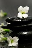 Piedras y flores del balneario Fotografía de archivo
