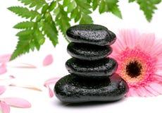 Piedras y margarita del basalto del zen aisladas en blanco Imagen de archivo