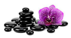 Piedras y orquídea del basalto del zen aisladas en blanco Imagen de archivo