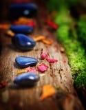Piedras y pétalos curativos Fotografía de archivo