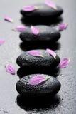 Piedras y pétalos del balneario Foto de archivo libre de regalías