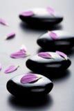 Piedras y pétalos del masaje Imágenes de archivo libres de regalías