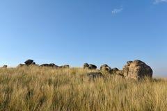 Piedras y prado Foto de archivo
