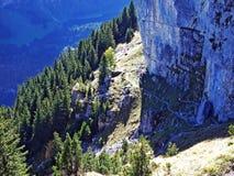 Piedras y rocas del macizo Alpstein de la montaña y en la región de Appenzellerland fotos de archivo libres de regalías