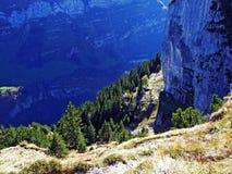 Piedras y rocas del macizo Alpstein de la montaña y en la región de Appenzellerland fotografía de archivo libre de regalías