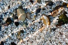 Piedras y shelles Fotos de archivo