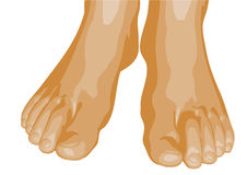 pieds illustration libre de droits