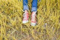 Pieds d'espadrille rouge une fille en nature Photo libre de droits