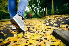 Pieds d'espadrilles marchant sur des feuilles de chute Photo stock