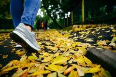 Pieds d'espadrilles marchant sur des feuilles de chute Image libre de droits