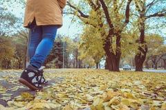 Pieds d'espadrilles marchant sur des feuilles de chute images stock