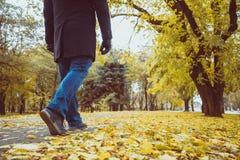 Pieds d'espadrilles marchant sur des feuilles de chute Photographie stock