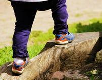 Pieds d'un petit garçon qui s'élève sur le grand tronçon d'arbre Photographie stock libre de droits