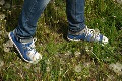 Pieds dans des chaussures de sports Images stock