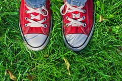 Pieds dans des espadrilles dans l'herbe verte Photos libres de droits