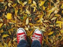 Pieds dans des espadrilles rouges sur le fond de l'automne Image libre de droits