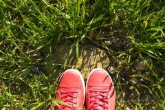 Pieds dans des espadrilles sur l'herbe verte Photographie stock