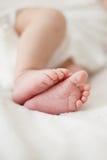 Pieds de bébé nouveau-né Images libres de droits