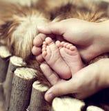 Pieds de chéri dans des mains de la mère Photo stock