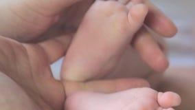 Pieds de chéri dans des mains de mère Les pieds nouveau-nés du ` s de bébé sur la femelle remet le plan rapproché banque de vidéos