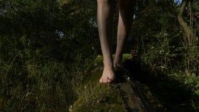 Pieds de jeune femme marchant sur un tronc d'arbre couvert de la mousse d'ours en nature - banque de vidéos