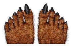 Pieds de loup-garou illustration de vecteur