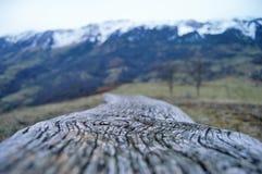 Pieds de montagne photo libre de droits