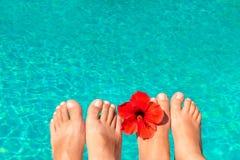 Pieds de nouveaux mariés par la piscine avec la fleur Image libre de droits
