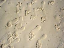 Pieds de sable Image stock