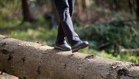 Pieds du ` s de femme dans des espadrilles marchant sur l'identifiez-vous la forêt Photographie stock