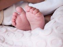 Pieds en gros plan de bébé Image stock