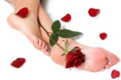 Pieds et Rose Photos libres de droits