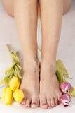 Pieds et tulipes Photos libres de droits
